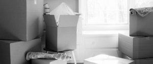 Rochester, MN Moving Company